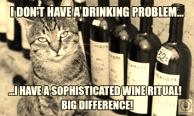 wine-cat-meme1